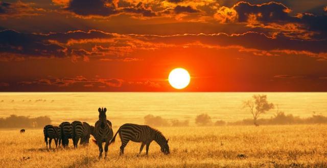 Apri Sud Africa e Mauritius - Un viaggio indimenticabile nel cuore della natura selvaggia sul sito Caesar Tour Sposi