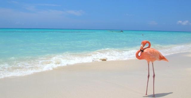 Apri Santo Domingo - VeraClub Canoa - La perla dei Caraibi sul sito Caesar Tour Sposi